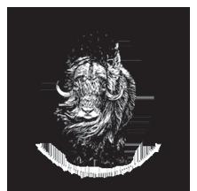 LARS-logo